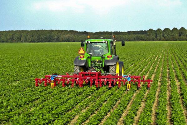 Министр: Урожайность в Азербайджане в этом году повысилась